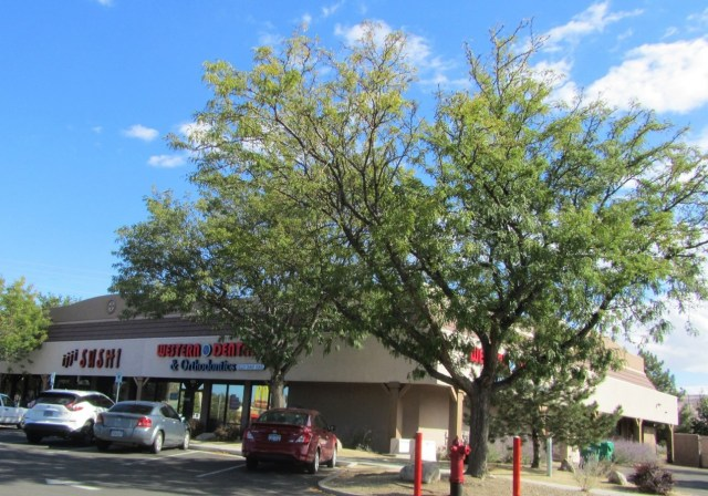 A picture of a Neighborhood Retail Center with Western Dental and sushi restaurant in Reno Nevada with beautiful blue sky and lovely trees.