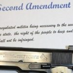 NJ Editorial A Slap at Second Amendment