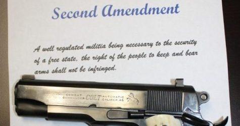 NJ Editorial A Slap at Second Amendment