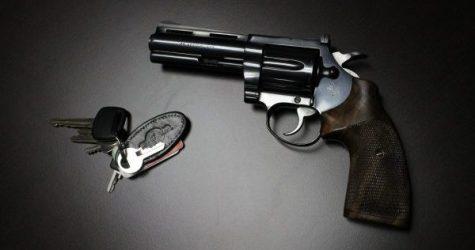 'Regulate Guns Like Cars'—You Mean, National Reciprocity?