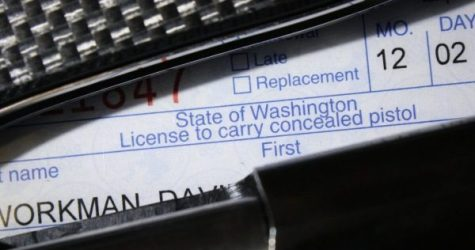 WA Democrats Wage War on Concealed Carry