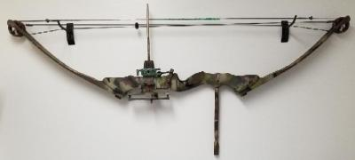 Painted Compound Bow