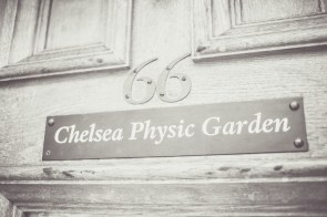 London bride wedding Chelsea Physic Garden and registry office 60