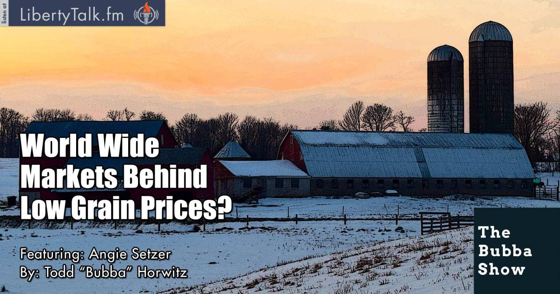 World Wide Markets Behind Low Grain Prices? - The Bubba Show