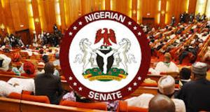 2020 Budget: Senate Insists On Passing Bill By November 28