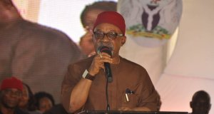 Chris Ngige, Minister Labour And Employment