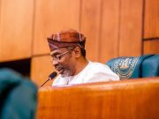 Femi Gbajabiamila, Speaker Of The House Of Representatives