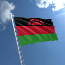 Malawi: Constitutional Court Cancels Presidential Election Result, Orders New Vote