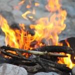 20 Ways to Use Herbs - Burning