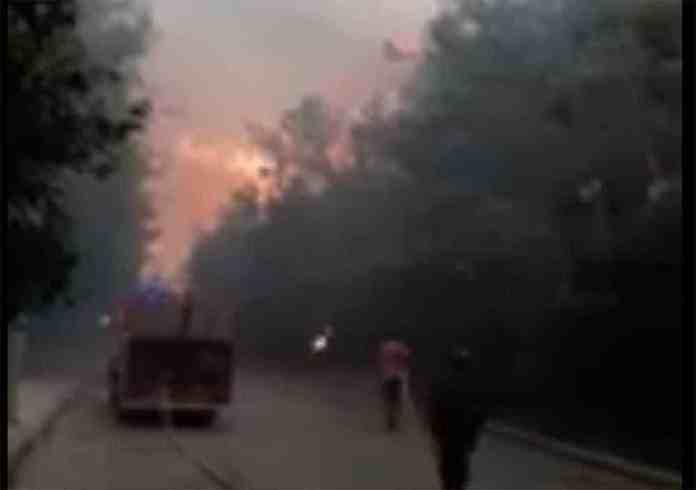 Capture d'écran de l'incendie qui ravage ce lundi le Chouf.
