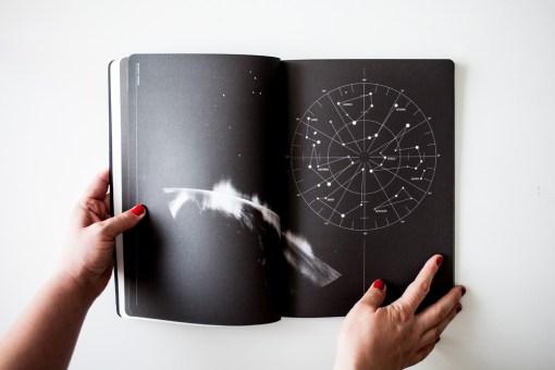 Cosmos-Sandrine-Elberg-Lame