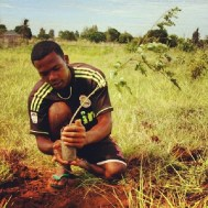 Planting mangrove trees in Madagascar. Mangrove trees take in more carbon than any other due to the extensive root systems.