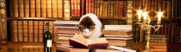 cropped-cat-desk-library-bannercrop.jpg