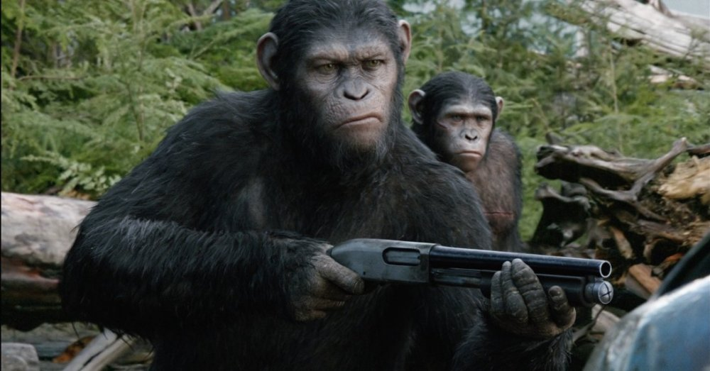 majmok bolygója