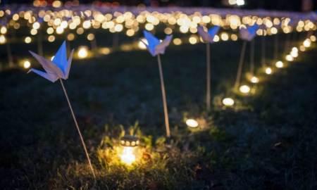 Ezer papírmadarat tűztek le a temetőben - fotók - papírmadár