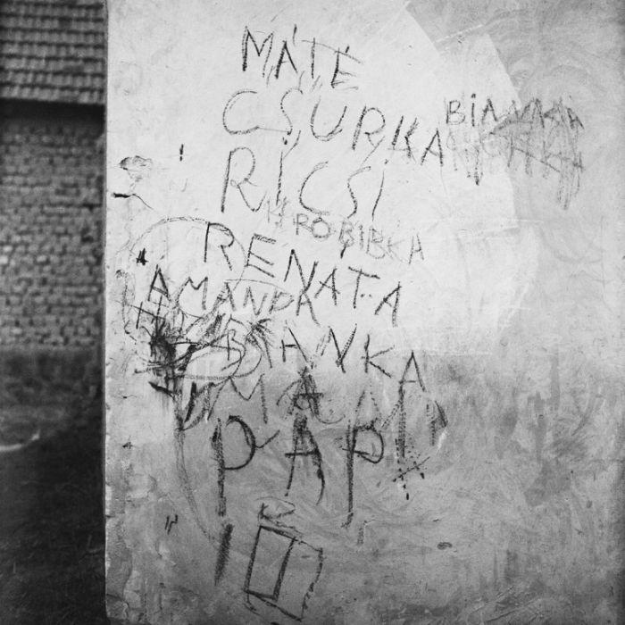 Turay Balázs: Hidegvérrel, házfal Tatárszentgyörgyön