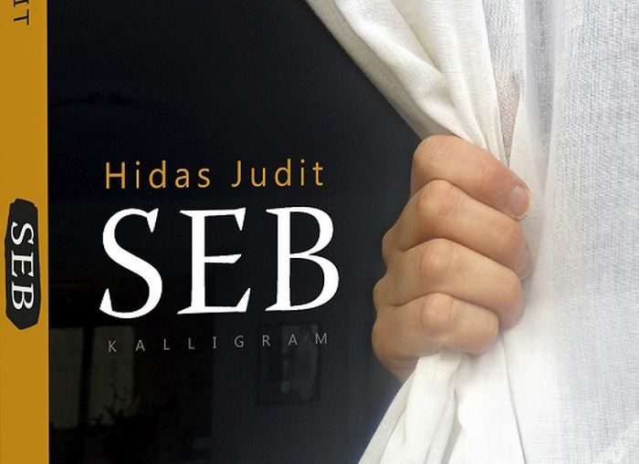 Hidas-SEB1