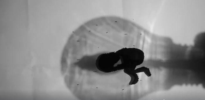 Filmkocka az ötödik helyezett, Bartha Áron klipjéből