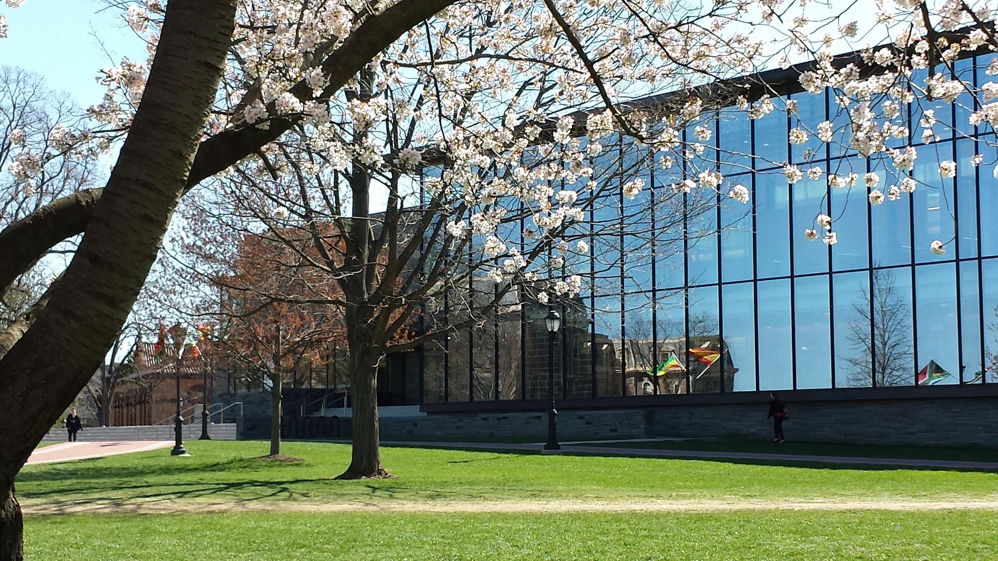 Library 183 Lafayette College