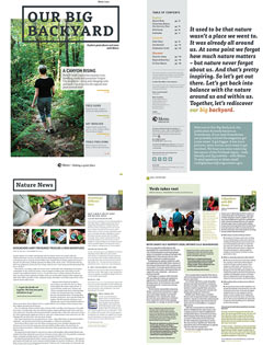 GreenScene print newsletter
