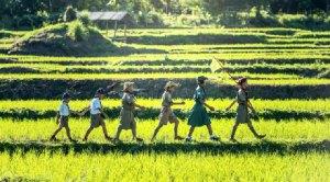 six children walk in a straight line across fields of green grass