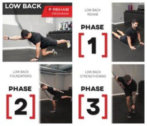low back prehab program the prehab guys