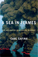 Book cover of A sea in flames