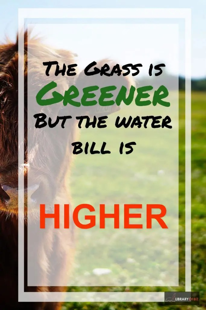 Check out this post on how the grass is greener but the waterfall is higher!