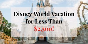 Always wanted to go to Disney but thought you can't afford to go? Check out our 6 tips on how we went to Disney for less than $2,500!