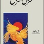 Manzil Manzil by A Hameed Download Free Pdf