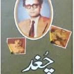 Chughad Afsane By Saadat Hasan Manto Pdf