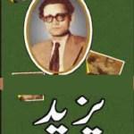 Yazeed By Saadat Hasan Manto Download Pdf