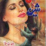 Ishq Ka Sheen Novel By Aleem Ul Haq Haqi Pdf Download