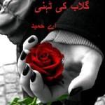 Gulab Ki Tehni Novel By A Hameed Free Pdf