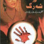 Sheesha Aur Shah Rag By Dabir Hussain Pdf