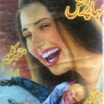 Maha Pursh Imran Series By Mazhar Kaleem MA Pdf