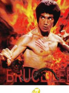 couv-Bruce-Lee_actilib