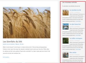 Barre latérale WordPress : L'une des possibilités avec le plugin Recent Posts Widget Extended