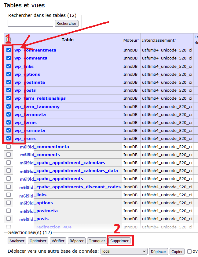 Sélection des tables avec le préfixe wp_ pour être supprimées