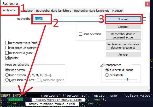 Zone de recherche sur Notepad++