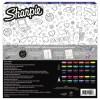 sharpie game 30 pcs-2
