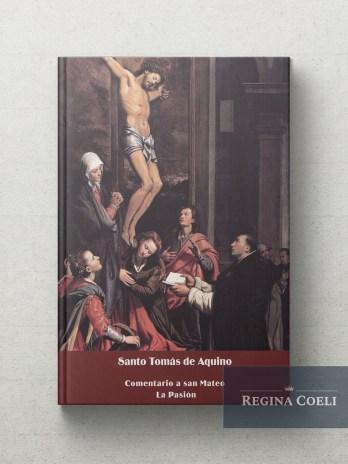 COMENTARIO A SAN MATEO – LA PASION (Ed. Bilingüe)