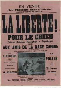 http://gallica.bnf.fr/ark:/12148/btv1b53019401k