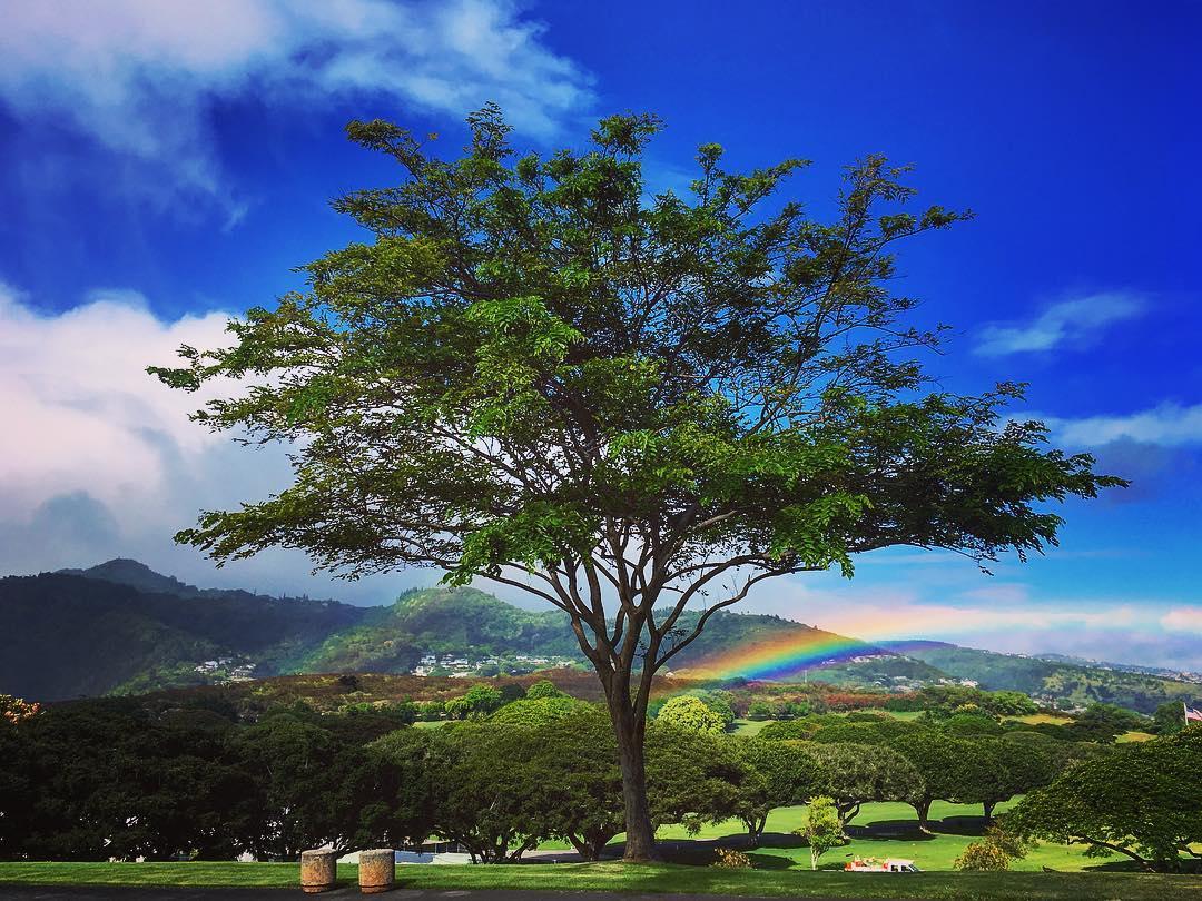 Honolulu, Île d'Oahu, Archipel d'Hawaii, États-Unis d'Amérique. Cimetière national du Pacifique.