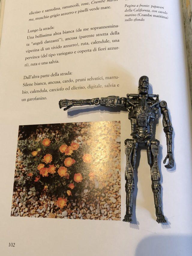 T-800 (6)_Il giardino di Derek Jarman_Libri Senza Gloria