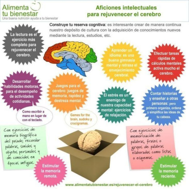 Medidas para potenciar las facultades intelectuales Libro Estilo de Vida Saludable