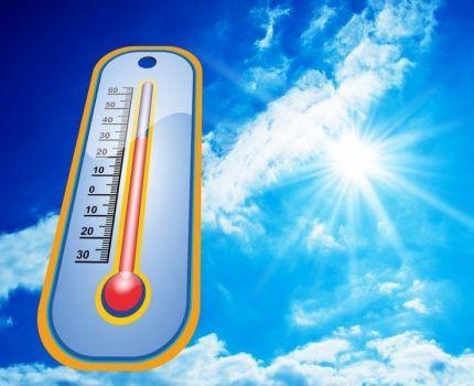 Medidas para combatir el exceso de calor.