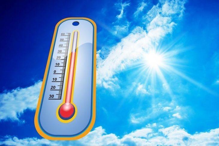 medidas para combatir el exceso de calor
