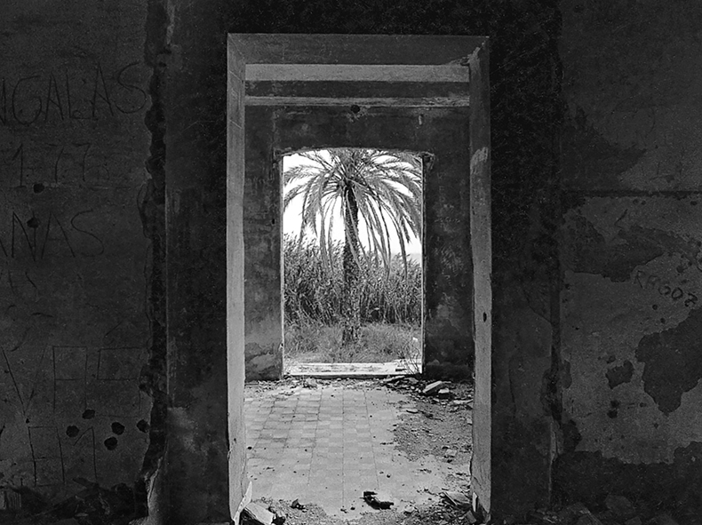 Pilar Pequeño, la fotógrafa de la naturaleza y las transparencias