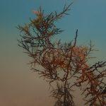 El cielo, la tierra y el mar se unen en las fotos de Beatriz García Infante